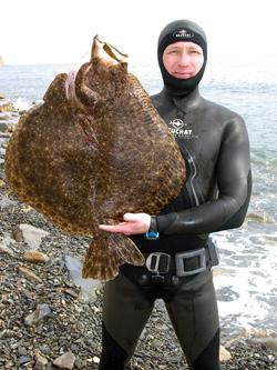 Редкие рыбы черного моря