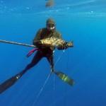 Жёлтый групер с 28 метров. Турция-2013
