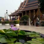 andrey_turuhano_thailand_13