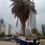 podvodnaya_ohota_v_Kuveyte_12