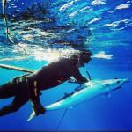 Madagaskar_spearfishing_Alexander_Kondrashov_2