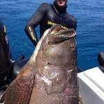 Madagaskar_spearfishing_Alexander_Kondrashov_5