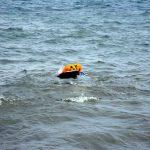 Boris_Nizov_spearfishing_Bali_roompons_145