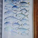 Boris_Nizov_spearfishing_Bali_roompons_155