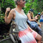 Boris_Nizov_spearfishing_Bali_roompons_243