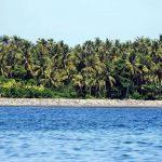 Boris_Nizov_spearfishing_Bali_roompons_3
