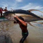 Boris_Nizov_spearfishing_Bali_roompons_336