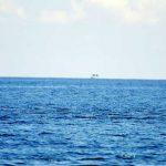 Boris_Nizov_spearfishing_Bali_roompons_4