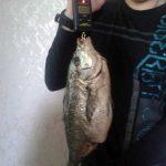 Sergey_Kezhelis_Podvodnaya_ohota_17