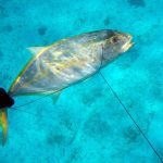 Podvodnaya_ohota_na_Cuba_37