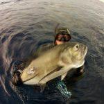 Podvodnaya_ohota_na_Cuba_5