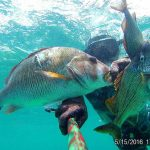 mikhail_novikov_dominicana_spearfishing_10