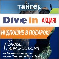 Акция Тайгер - индпошив гидрокостюма Dive In в подарок!