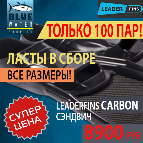Только 100 пар ласт Leaderfins Carbon (сэндвич)