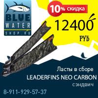 Акция Bluewatershop.ru - ласты в сборе Leaderfins NEO карбон сэндвич